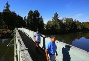 Salmon viewing on a pedestrian bridge over the Duwamish Waterway in Tukwila. Photo by Mark Harrison/The Seattle Times.