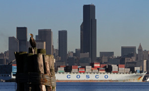 A Cosco container ship enters Elliott Bay. Cosco is the national flag carrier of China, the world's largest trading nation. (Photo by Ken Lambert / The Seattle Times)