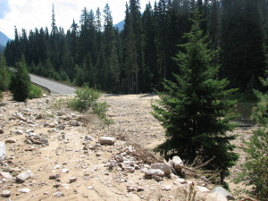 One of the landslides that have closed the North Cascades Highway near Rainy Pass. (WSDOT photo)