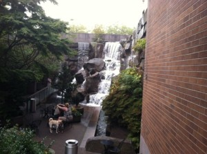 Waterfall Garden (Robert J. Vickers / The Seattle Times)