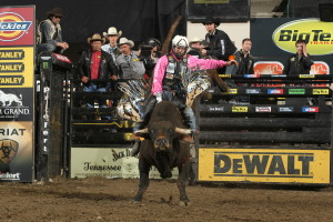 Shane Proctor rides Mike Corey's Super Fly during the Billings Built Ford Tough series PBR event.  Photo by Andy Watson